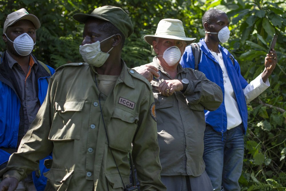 "In this photo taken July 30, 2014, a tourist and park rangers wear protective masks as they visit the Virunga National Park in eastern Congo. Congo's Virunga National Park, home to about a third of the world's mountain gorillas, has barred visitors until June 1 2020, citing ""advice from scientific experts indicating that primates, including mountain gorillas, are likely susceptible to complications arising from the COVID-19 virus."" (AP Photo/Jerome Delay)"